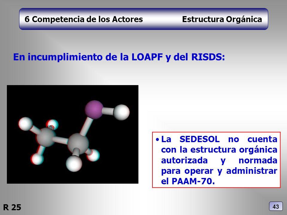 6 Competencia de los Actores Estructura Orgánica En incumplimiento de la LOAPF y del RISDS: La SEDESOL no cuenta con la estructura orgánica autorizada