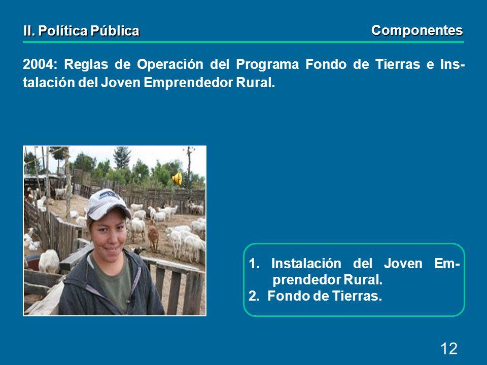 12 2004: Reglas de Operación del Programa Fondo de Tierras e Ins- talación del Joven Emprendedor Rural.