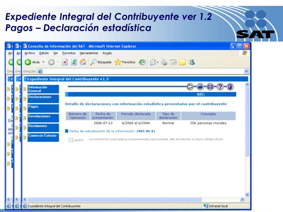 Expediente Integral del Contribuyente ver 1.2 Pagos – Declaración estadística