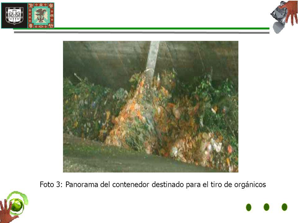 Foto 3: Panorama del contenedor destinado para el tiro de orgánicos
