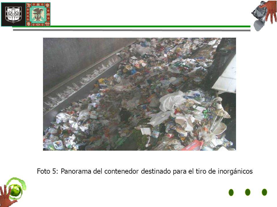 Foto 5: Panorama del contenedor destinado para el tiro de inorgánicos
