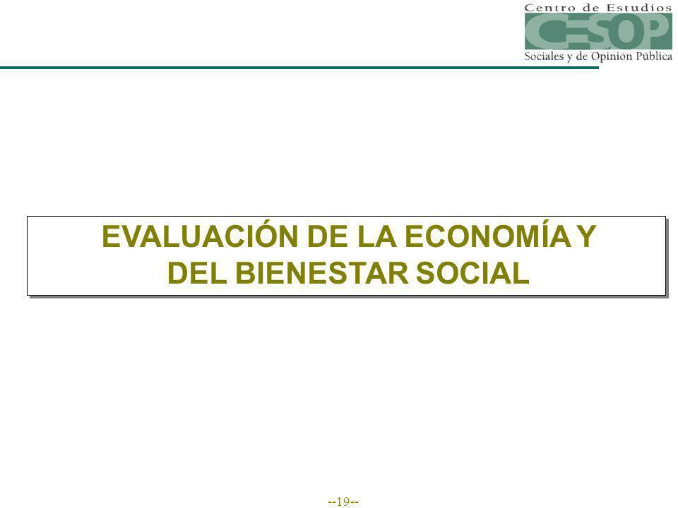 --19-- EVALUACIÓN DE LA ECONOMÍA Y DEL BIENESTAR SOCIAL