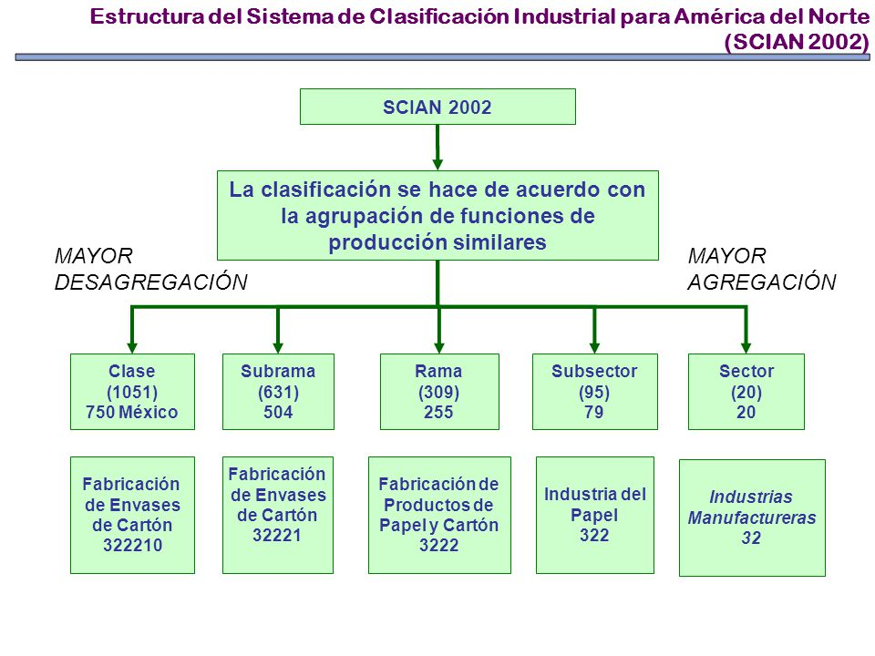 SCIAN 2002 La clasificación se hace de acuerdo con la agrupación de funciones de producción similares Sector (20) 20 Subsector (95) 79 Rama (309) 255