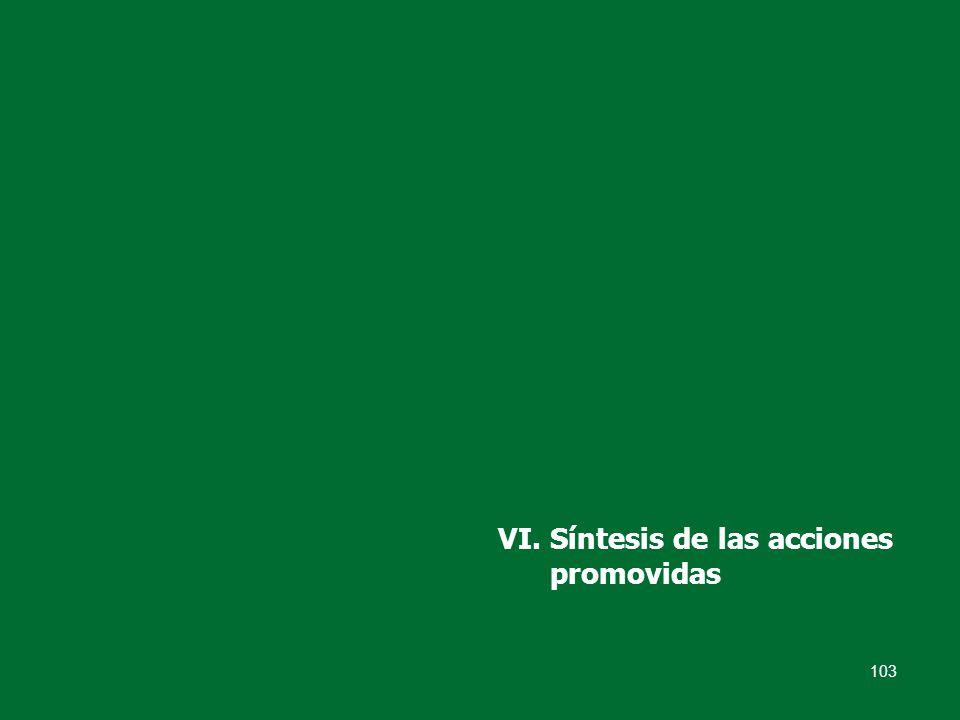 103 VI. Síntesis de las acciones promovidas