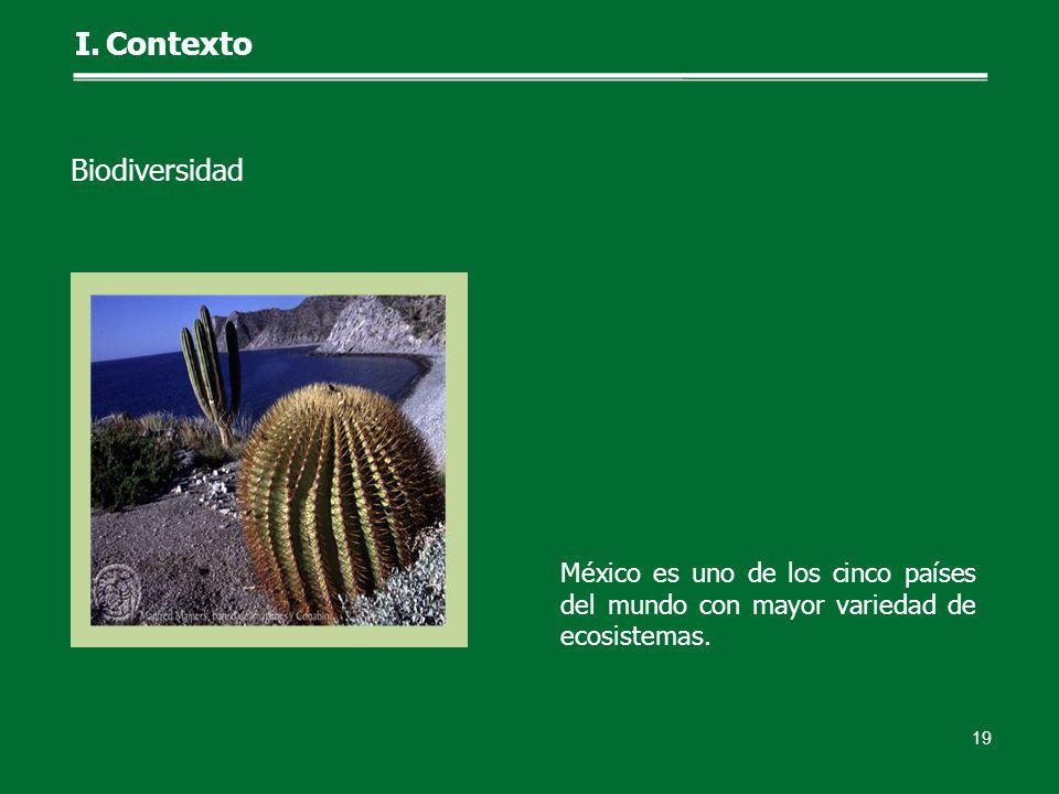 México es uno de los cinco países del mundo con mayor variedad de ecosistemas. 19 I.Contexto Biodiversidad