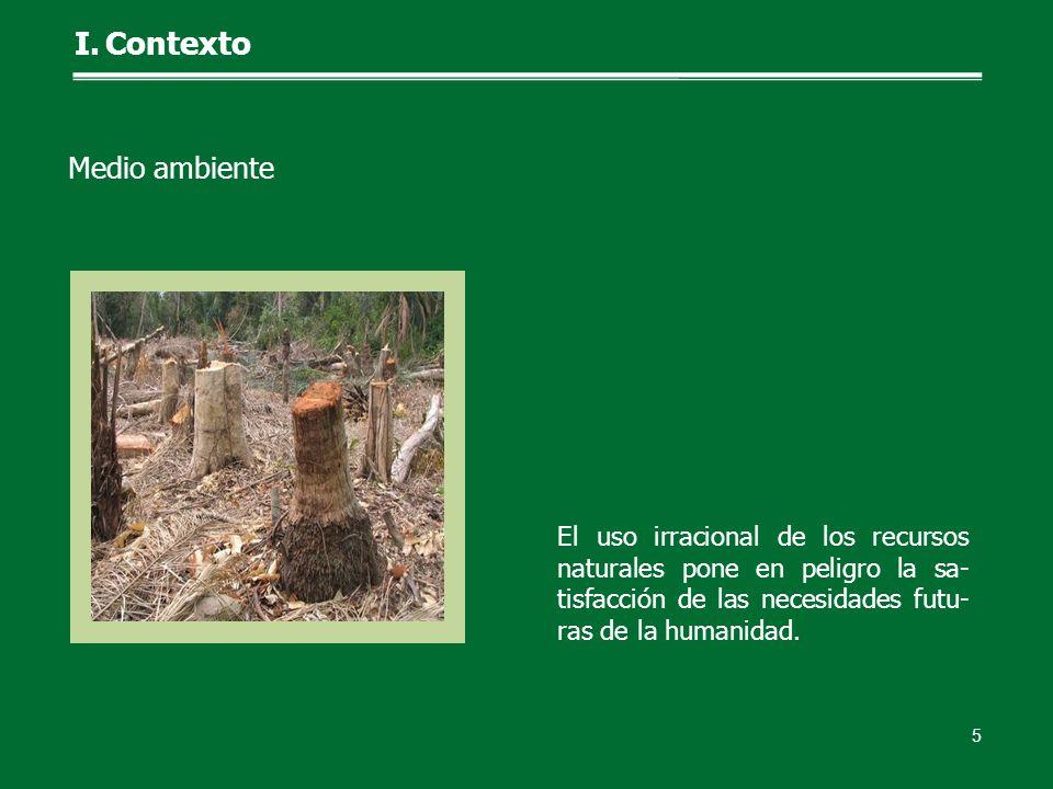 El uso irracional de los recursos naturales pone en peligro la sa- tisfacción de las necesidades futu- ras de la humanidad. 5 I.Contexto Medio ambient