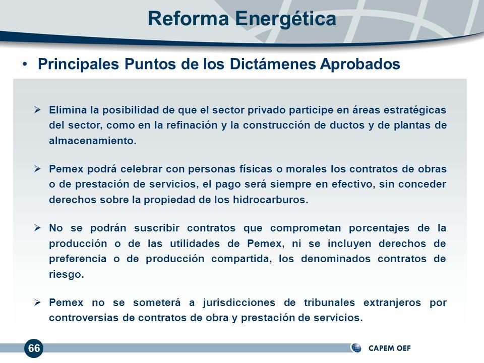 66 Elimina la posibilidad de que el sector privado participe en áreas estratégicas del sector, como en la refinación y la construcción de ductos y de plantas de almacenamiento.