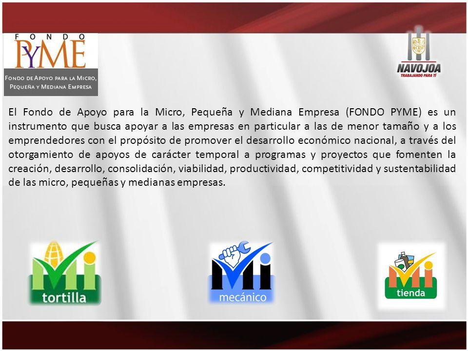 El Fondo de Apoyo para la Micro, Pequeña y Mediana Empresa (FONDO PYME) es un instrumento que busca apoyar a las empresas en particular a las de menor tamaño y a los emprendedores con el propósito de promover el desarrollo económico nacional, a través del otorgamiento de apoyos de carácter temporal a programas y proyectos que fomenten la creación, desarrollo, consolidación, viabilidad, productividad, competitividad y sustentabilidad de las micro, pequeñas y medianas empresas.