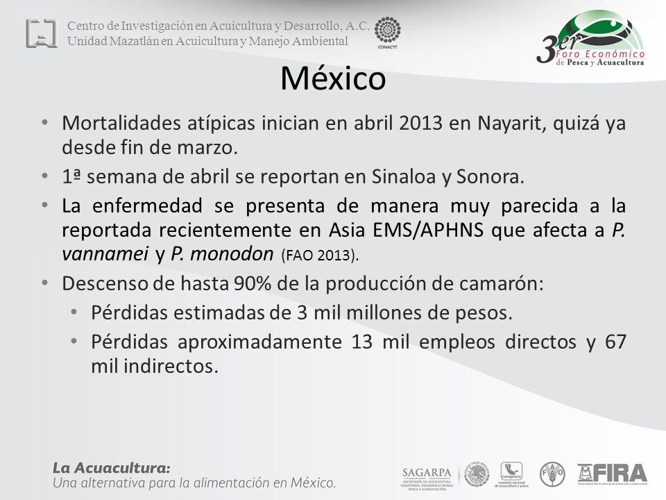 México Mortalidades atípicas inician en abril 2013 en Nayarit, quizá ya desde fin de marzo.
