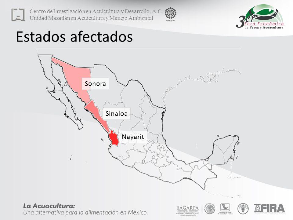 Estados afectados Nayarit Sinaloa Sonora Centro de Investigación en Acuicultura y Desarrollo, A.C.