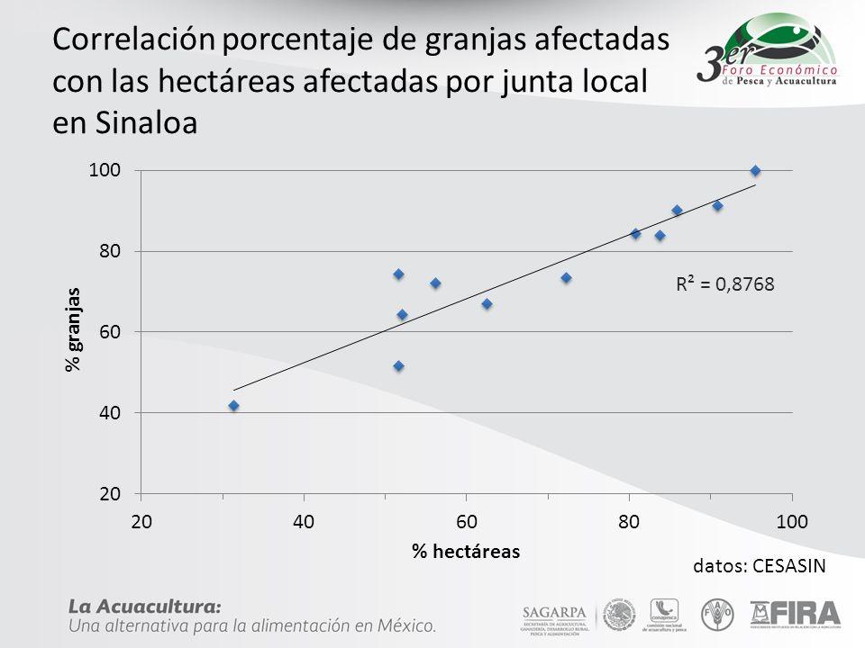 Correlación porcentaje de granjas afectadas con las hectáreas afectadas por junta local en Sinaloa datos: CESASIN