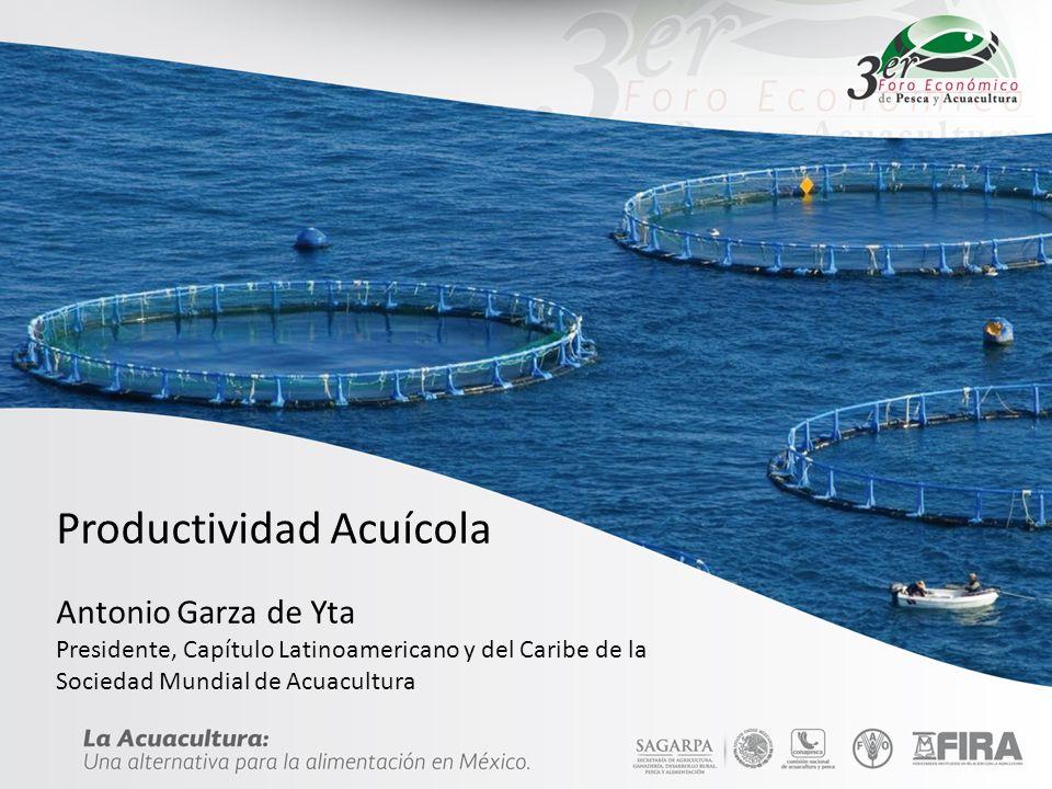 Productividad Acuícola Antonio Garza de Yta Presidente, Capítulo Latinoamericano y del Caribe de la Sociedad Mundial de Acuacultura