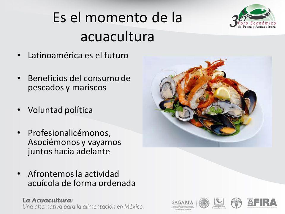 Es el momento de la acuacultura Latinoamérica es el futuro Beneficios del consumo de pescados y mariscos Voluntad política Profesionalicémonos, Asociémonos y vayamos juntos hacia adelante Afrontemos la actividad acuícola de forma ordenada