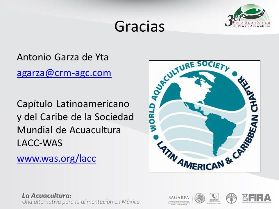 Gracias Antonio Garza de Yta agarza@crm-agc.com Capítulo Latinoamericano y del Caribe de la Sociedad Mundial de Acuacultura LACC-WAS www.was.org/lacc