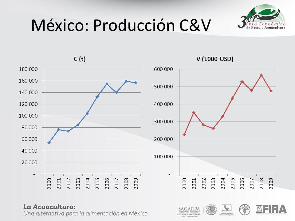 Especies EspecieV (t)% Camarón 125,77880.1% Tilapia 11,1747.1% Trucha 4,8753.1% Otros 15,1309.6% Total 156,957 FAO: 2009
