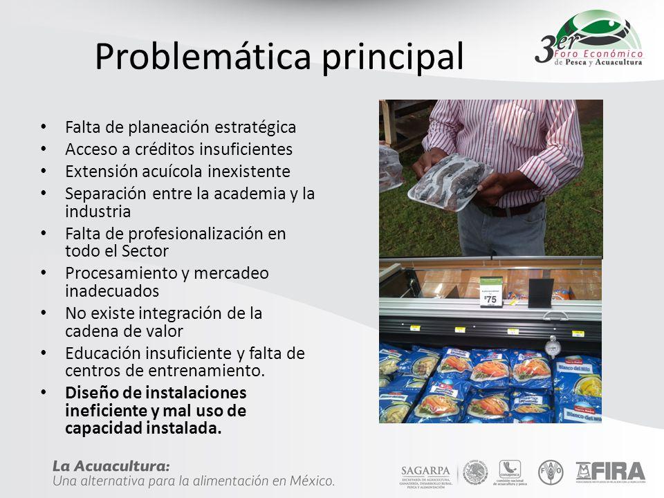 Productividad Es el indicador de eficiencia que relaciona la cantidad de recursos utilizados con la cantidad de producción obtenida.