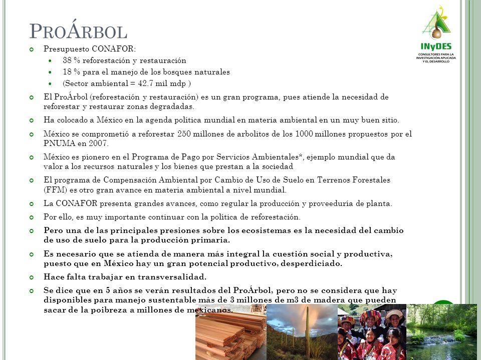 P RO Á RBOL Presupuesto CONAFOR: 38 % reforestación y restauración 18 % para el manejo de los bosques naturales (Sector ambiental = 42.7 mil mdp ) El ProÁrbol (reforestación y restauración) es un gran programa, pues atiende la necesidad de reforestar y restaurar zonas degradadas.