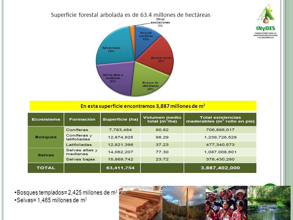 Superficie forestal arbolada es de 63.4 millones de hectáreas En esta superficie encontramos 3,887 millones de m 3 Bosques templados= 2,425 millones de m 3 Selvas= 1,465 millones de m 3