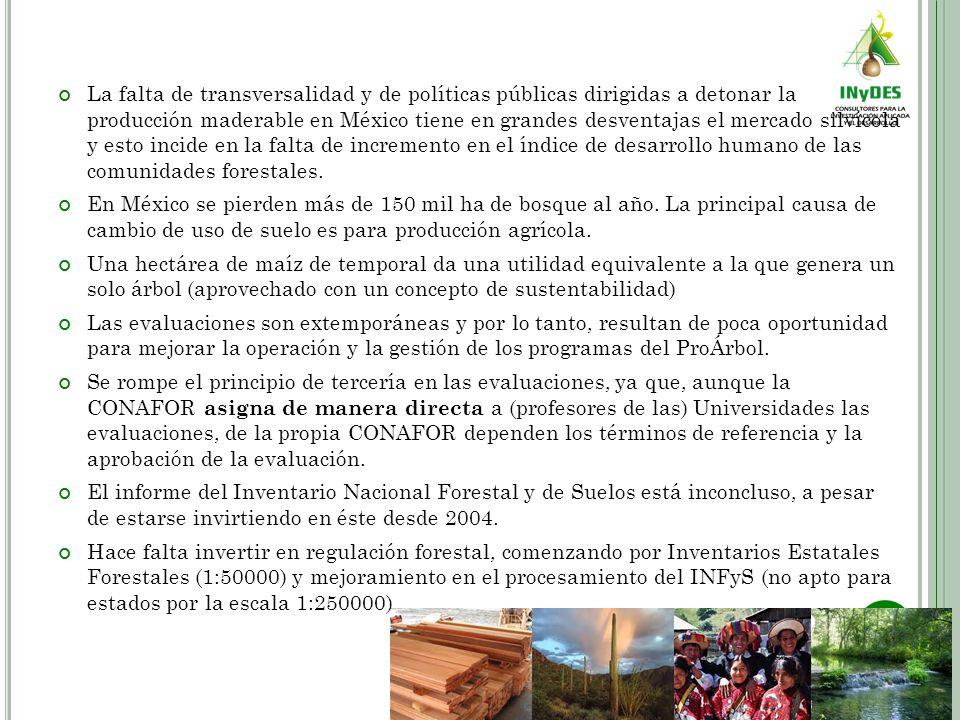 La falta de transversalidad y de políticas públicas dirigidas a detonar la producción maderable en México tiene en grandes desventajas el mercado silv