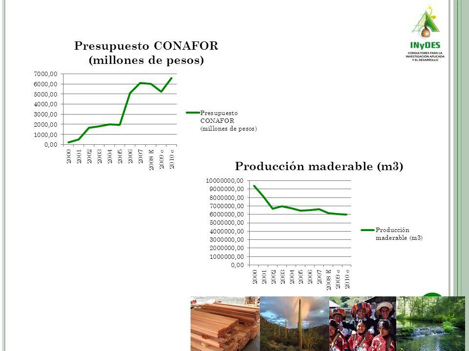 A PRECIACIONES La tendencia a la baja en la producción y el PIB forestal se deben en parte a factores externos, pero varios como son: El crecimiento en la producción maderable de países como Chile que ha hecho importantes inversiones en Plantaciones Forestales Comerciales.