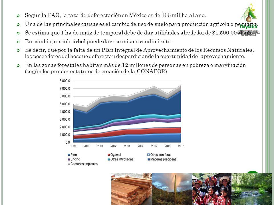 Según la FAO, la taza de deforestación en México es de 155 mil ha al año. Una de las principales causas es el cambio de uso de suelo para producción a