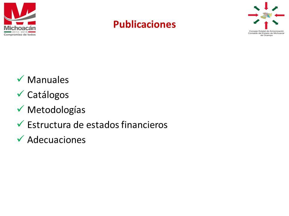 Manuales Catálogos Metodologías Estructura de estados financieros Adecuaciones Publicaciones