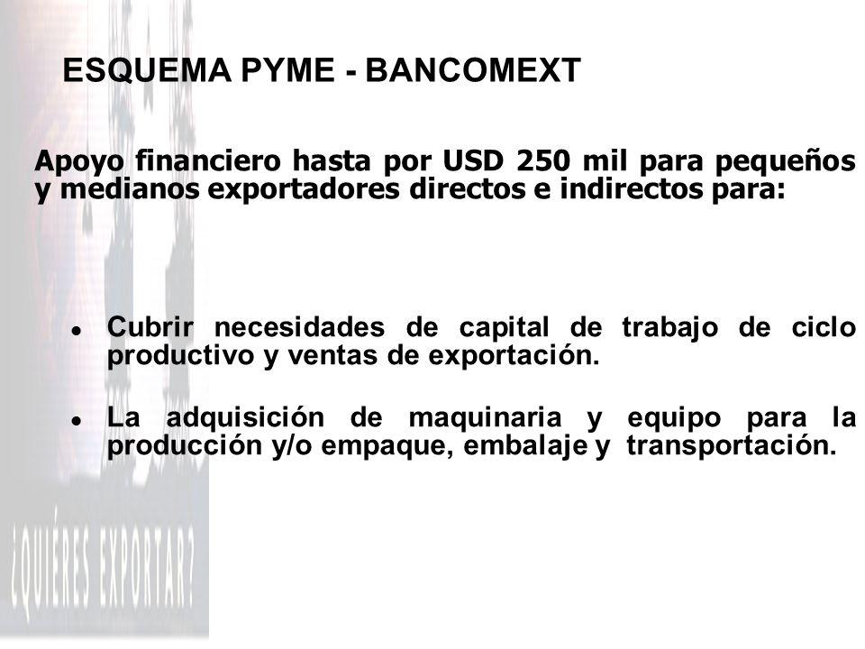ESQUEMA PYME - BANCOMEXT Apoyo financiero hasta por USD 250 mil para pequeños y medianos exportadores directos e indirectos para: l Cubrir necesidades