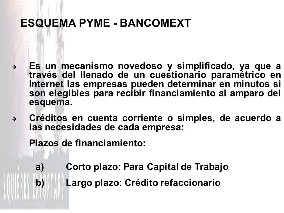 ESQUEMA PYME - BANCOMEXT è Es un mecanismo novedoso y simplificado, ya que a través del llenado de un cuestionario paramétrico en Internet las empresa