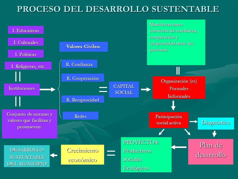 PROCESO DEL DESARROLLO SUSTENTABLE Organización (es) FormalesInformales DESARROLLO SUSTENTABLE DEL MUNICIPIO SUSTENTABLE DEL MUNICIPIO CAPITAL SOCIAL