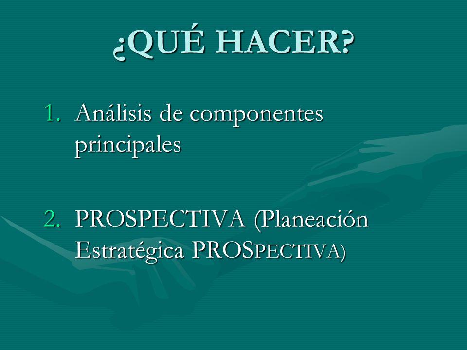 ¿QUÉ HACER? 1.Análisis de componentes principales 2.PROSPECTIVA (Planeación Estratégica PROS PECTIVA)