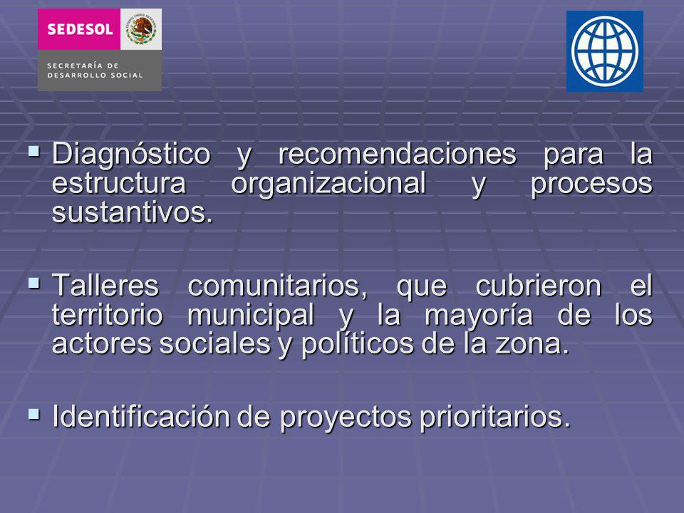 Diagnóstico y recomendaciones para la estructura organizacional y procesos sustantivos.