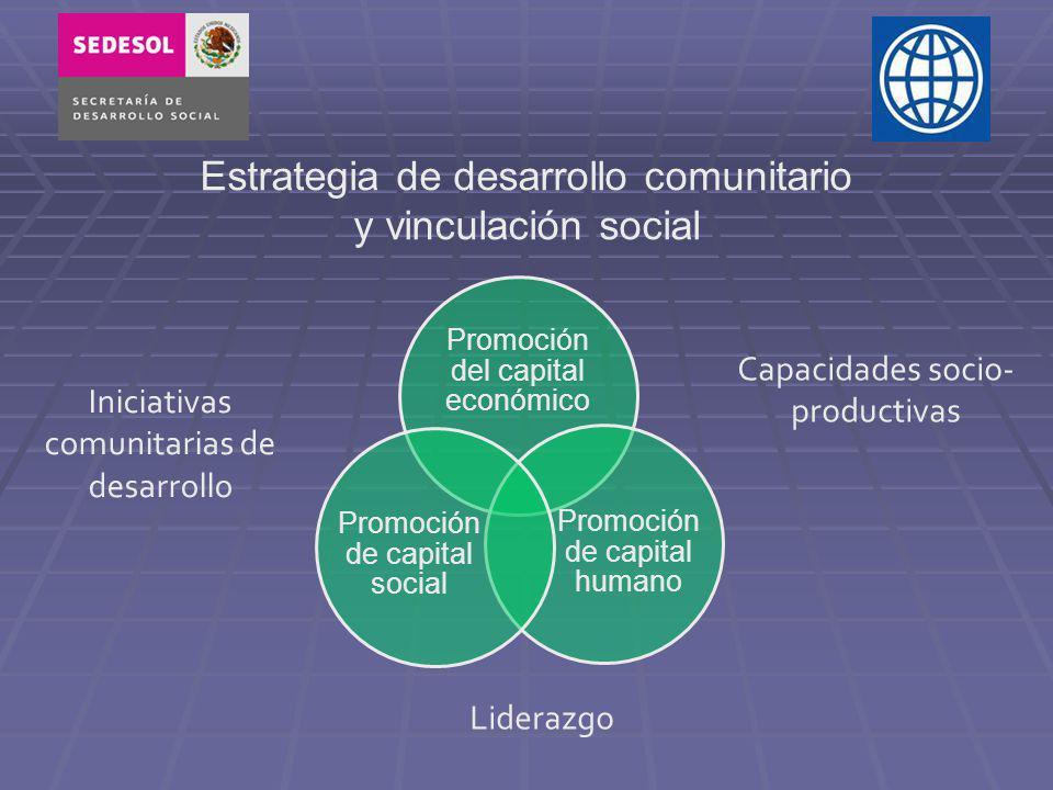 Estrategia de desarrollo comunitario y vinculación social Promoción del capital económico Promoción de capital humano Promoción de capital social Liderazgo Iniciativas comunitarias de desarrollo Capacidades socio- productivas