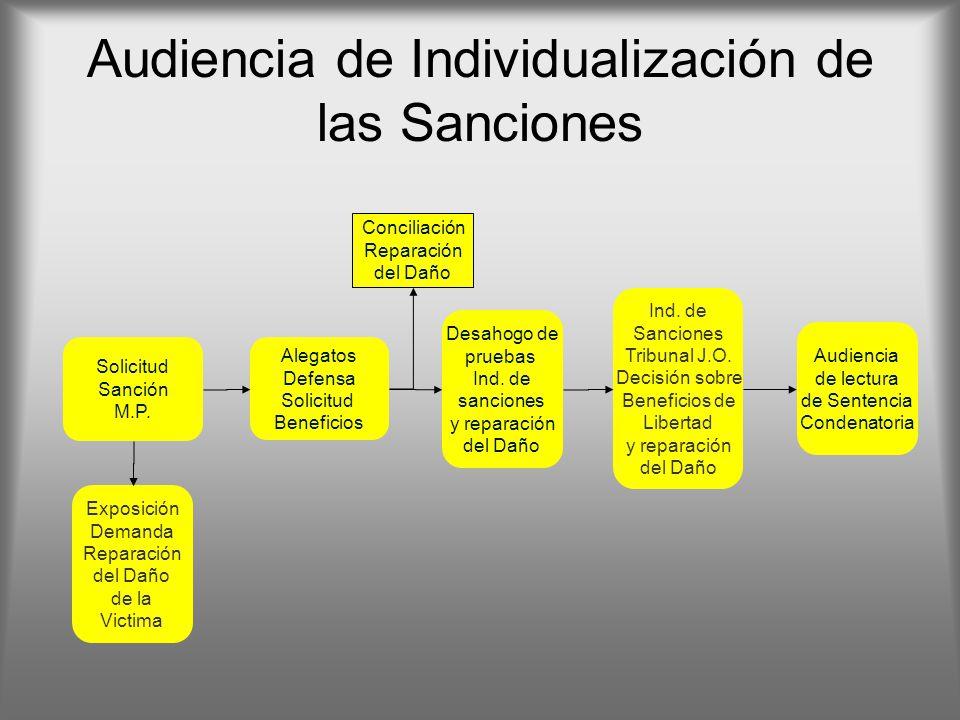 Audiencia de Individualización de las Sanciones Solicitud Sanción M.P. Exposición Demanda Reparación del Daño de la Victima Alegatos Defensa Solicitud