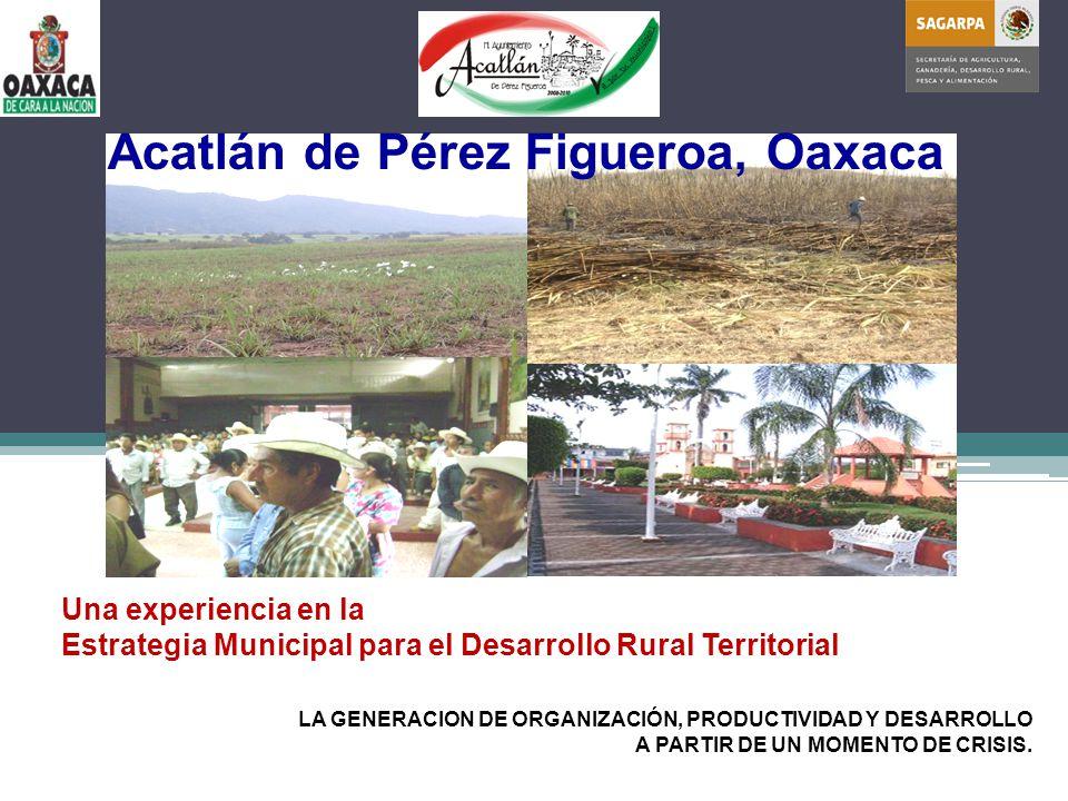 Una experiencia en la Estrategia Municipal para el Desarrollo Rural Territorial Acatlán de Pérez Figueroa, Oaxaca LA GENERACION DE ORGANIZACIÓN, PRODUCTIVIDAD Y DESARROLLO A PARTIR DE UN MOMENTO DE CRISIS.