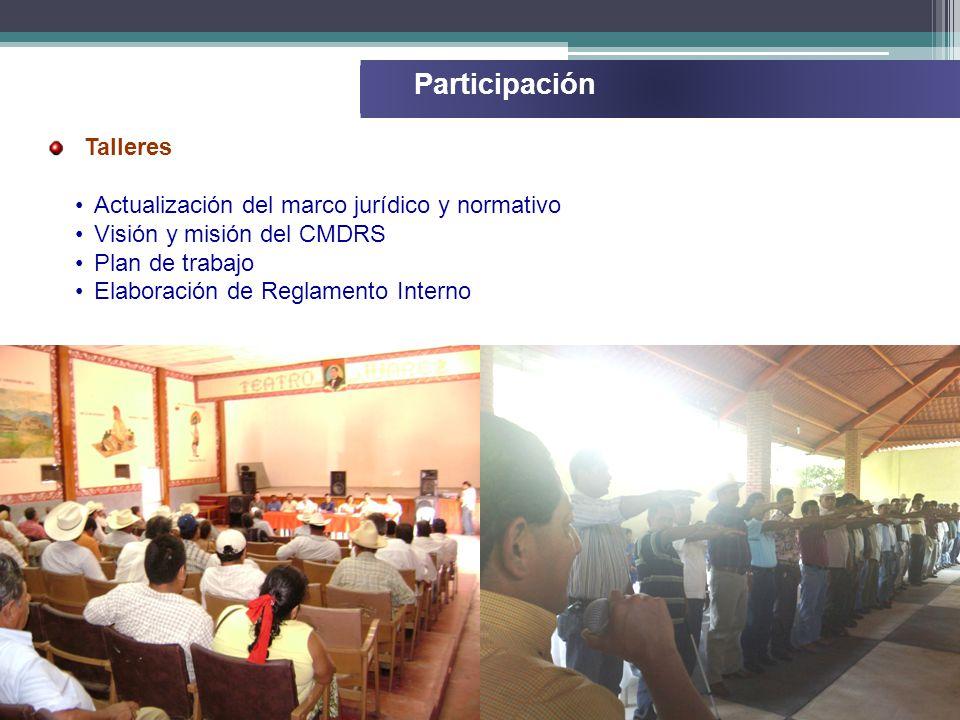 Participación Talleres Actualización del marco jurídico y normativo Visión y misión del CMDRS Plan de trabajo Elaboración de Reglamento Interno