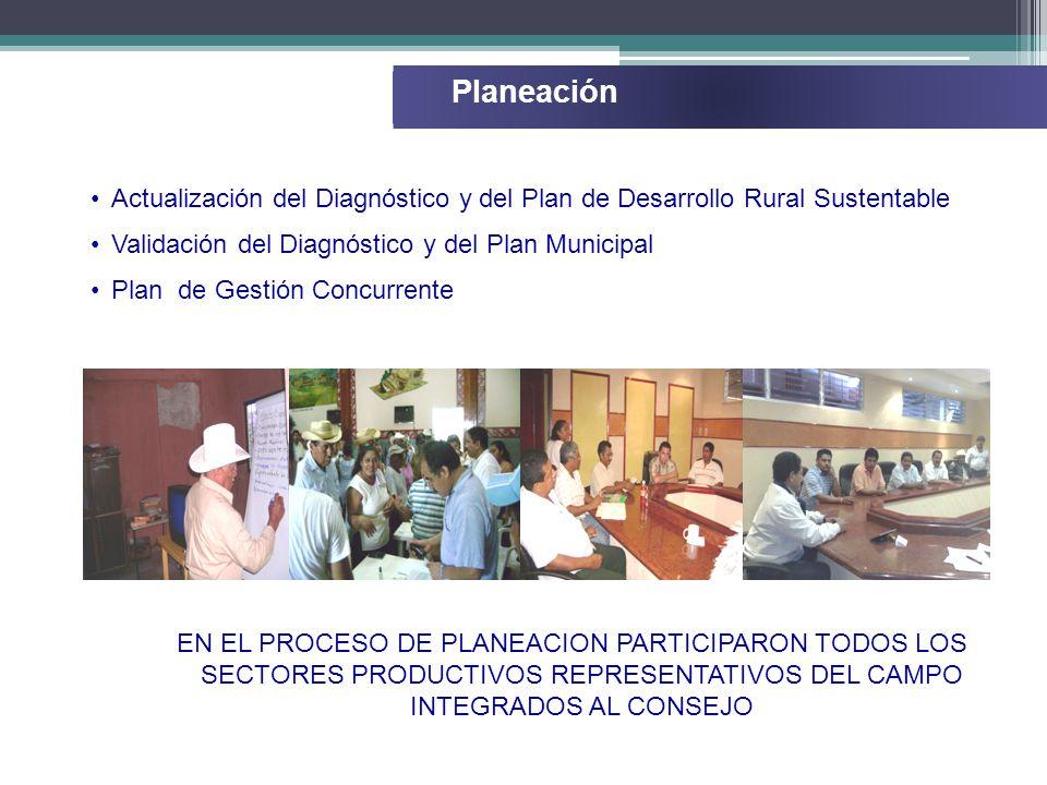 Planeación Actualización del Diagnóstico y del Plan de Desarrollo Rural Sustentable Validación del Diagnóstico y del Plan Municipal Plan de Gestión Concurrente EN EL PROCESO DE PLANEACION PARTICIPARON TODOS LOS SECTORES PRODUCTIVOS REPRESENTATIVOS DEL CAMPO INTEGRADOS AL CONSEJO