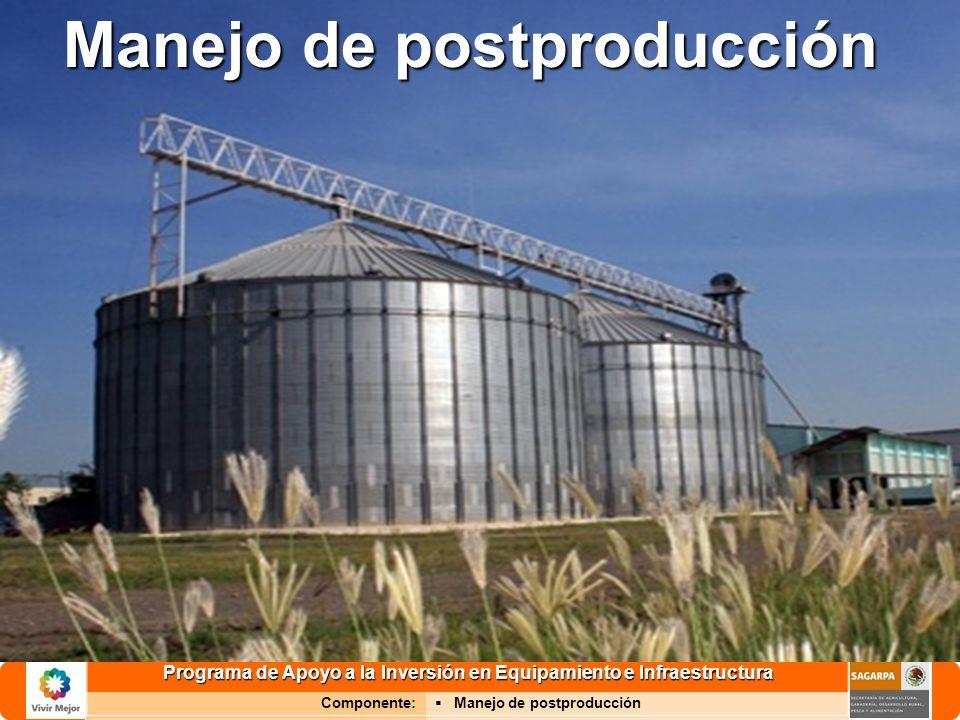 Programa de Apoyo a la Inversión en Equipamiento e Infraestructura Componente: Manejo de postproducción