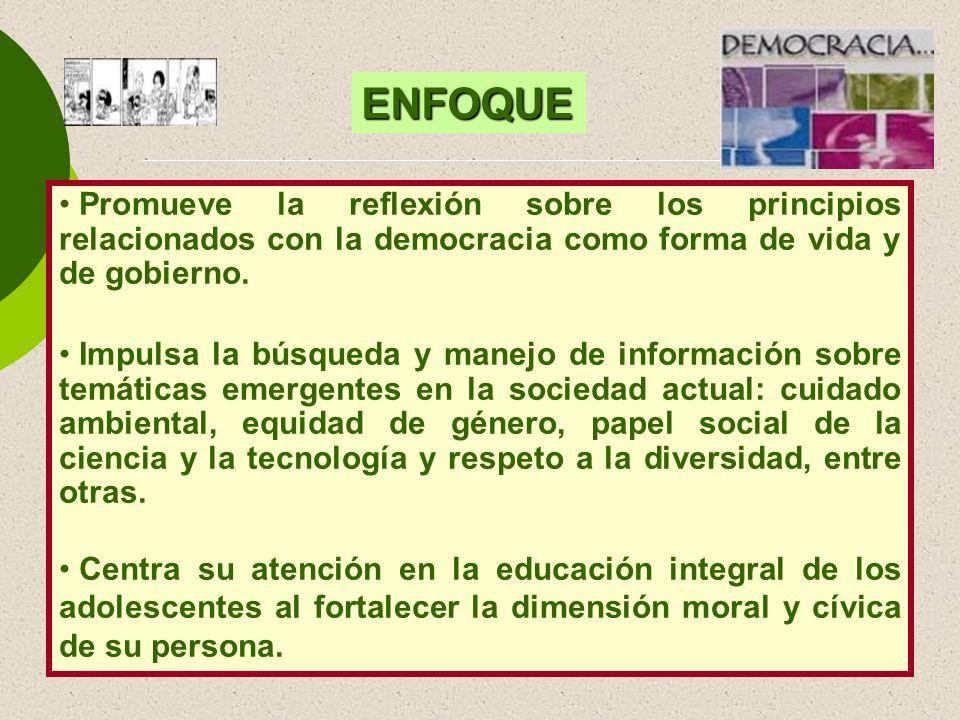 Promueve la reflexión sobre los principios relacionados con la democracia como forma de vida y de gobierno. Impulsa la búsqueda y manejo de informació