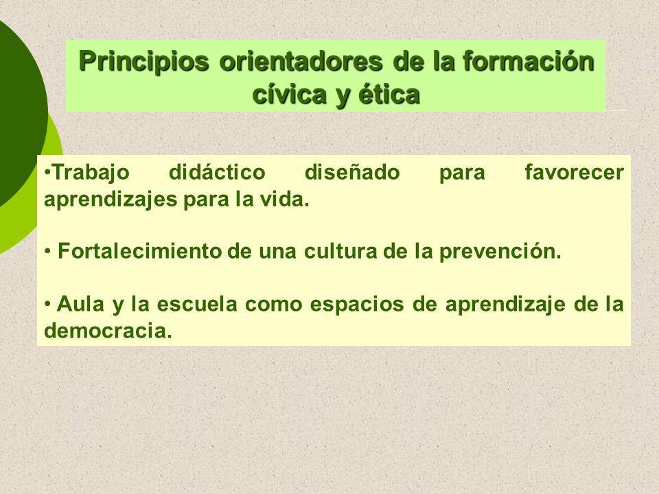 Trabajo didáctico diseñado para favorecer aprendizajes para la vida. Fortalecimiento de una cultura de la prevención. Aula y la escuela como espacios