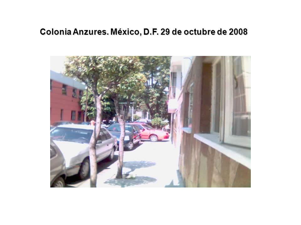 Colonia Anzures. México, D.F. 29 de octubre de 2008