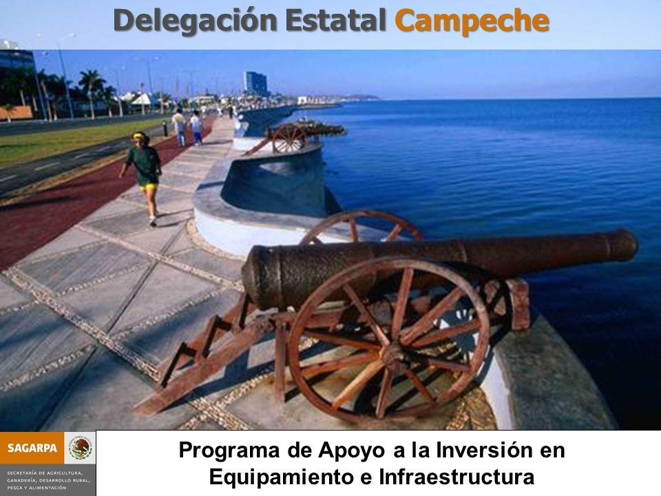 Programa de Apoyo a la Inversión en Equipamiento e Infraestructura Delegación Estatal Campeche Programa de Apoyo a la Inversión en Equipamiento e Infr
