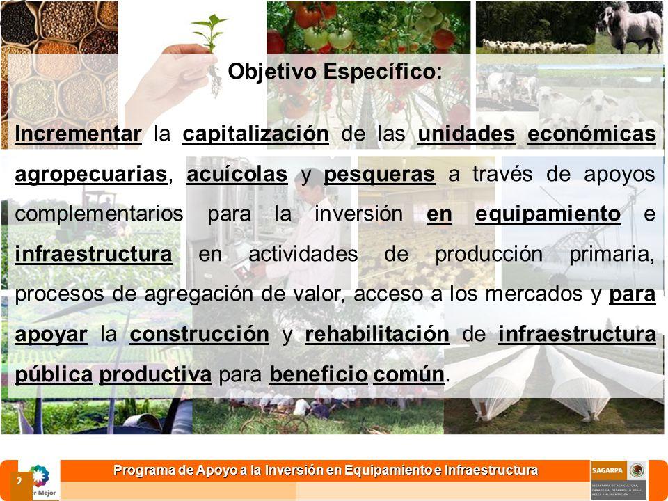 2 Objetivo Específico: Incrementar la capitalización de las unidades económicas agropecuarias, acuícolas y pesqueras a través de apoyos complementario
