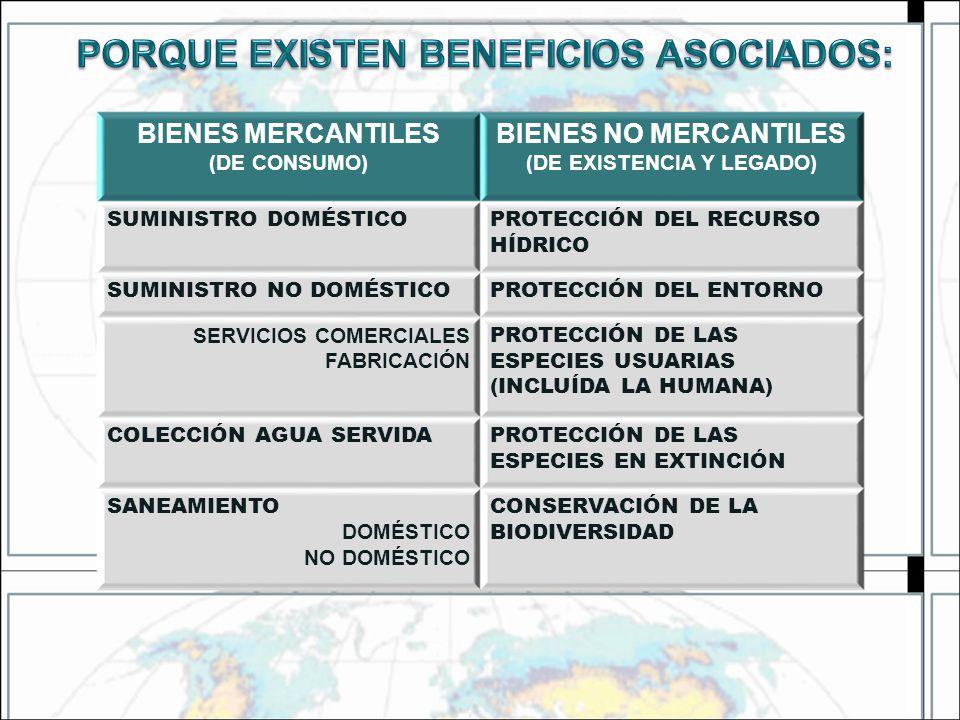 BIENES MERCANTILES (DE CONSUMO) BIENES NO MERCANTILES (DE EXISTENCIA Y LEGADO) SUMINISTRO DOMÉSTICOPROTECCIÓN DEL RECURSO HÍDRICO SUMINISTRO NO DOMÉST