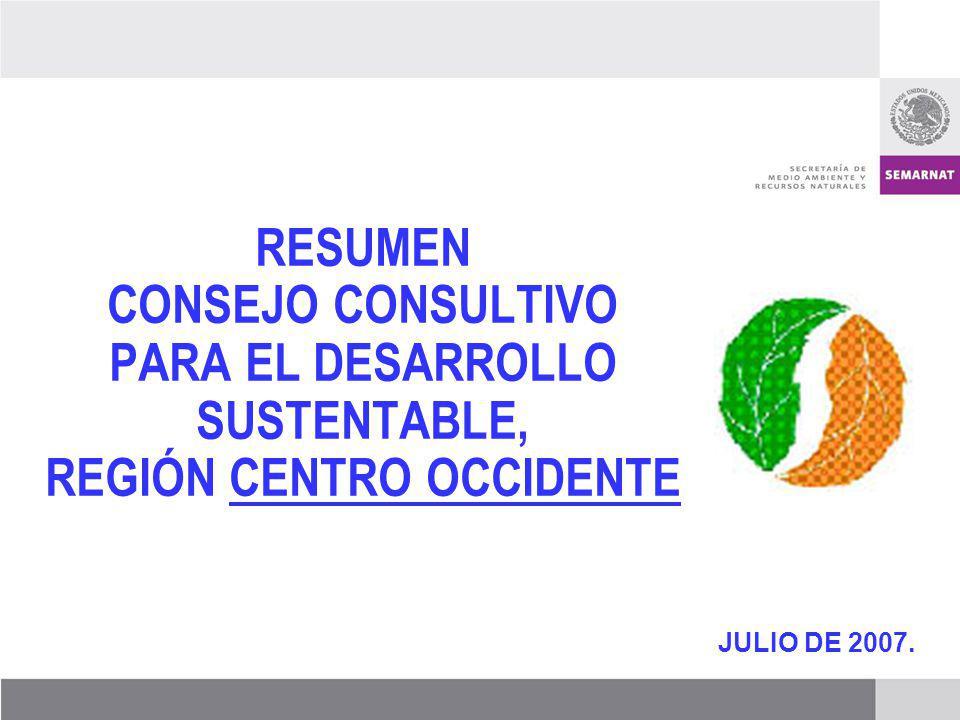 JULIO DE 2007. RESUMEN CONSEJO CONSULTIVO PARA EL DESARROLLO SUSTENTABLE, REGIÓN CENTRO OCCIDENTE