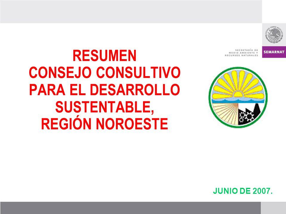 JUNIO DE 2007. RESUMEN CONSEJO CONSULTIVO PARA EL DESARROLLO SUSTENTABLE, REGIÓN NOROESTE