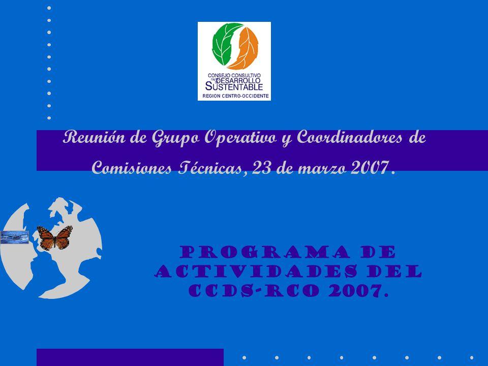 Reunión de Grupo Operativo y Coordinadores de Comisiones Técnicas, 23 de marzo 2007. Programa de Actividades del CCDS-RCO 2007.