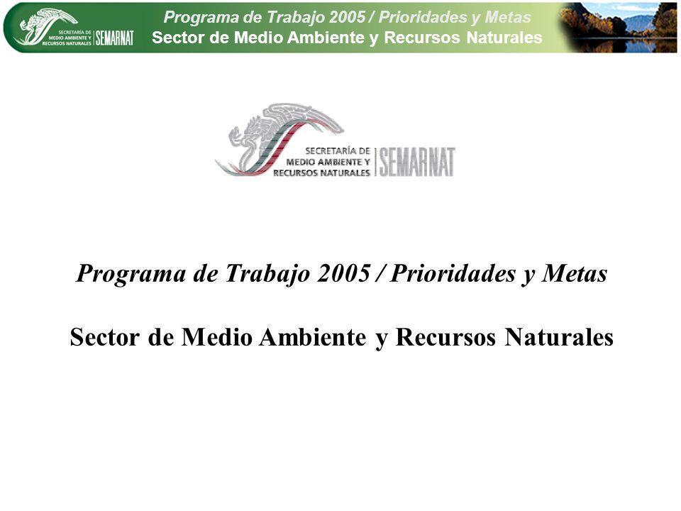 Programa de Trabajo 2005 / Prioridades y Metas Sector de Medio Ambiente y Recursos Naturales PrioridadMetas Defensa de bosques, suelos y cobertura vegetal1 Defensa de la calidad de las aguas nacionales1 Impulso a la transversalidad de las políticas públicas para promover el desarrollo sustentable 1 Biodiversidad, ecosistemas, vida silvestre y servicios ambientales 13 Regiones, cuencas hidrológicas y zonas prioritarias8 Infraestructura ambiental: agua, aire residuos14 Participación ciudadana, educación ambiental, difusión, transparencia y comunicación social 7 Marco normativo, procuración de justicia ambiental y agenda internacional 7 Buen Gobierno y Modernización Administrativa8 Total de metas por prioridad