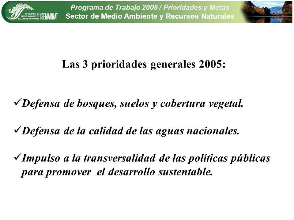 Programa de Trabajo 2005 / Prioridades y Metas Sector de Medio Ambiente y Recursos Naturales Las 3 prioridades generales 2005: Defensa de bosques, suelos y cobertura vegetal.