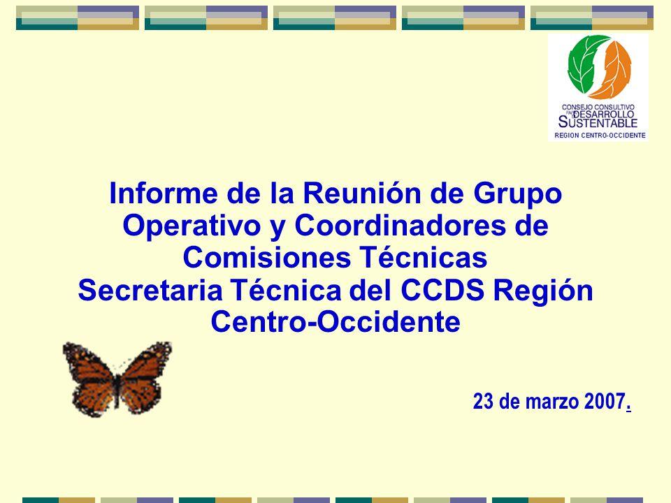 Informe de la Reunión de Grupo Operativo y Coordinadores de Comisiones Técnicas Secretaria Técnica del CCDS Región Centro-Occidente 23 de marzo 2007.