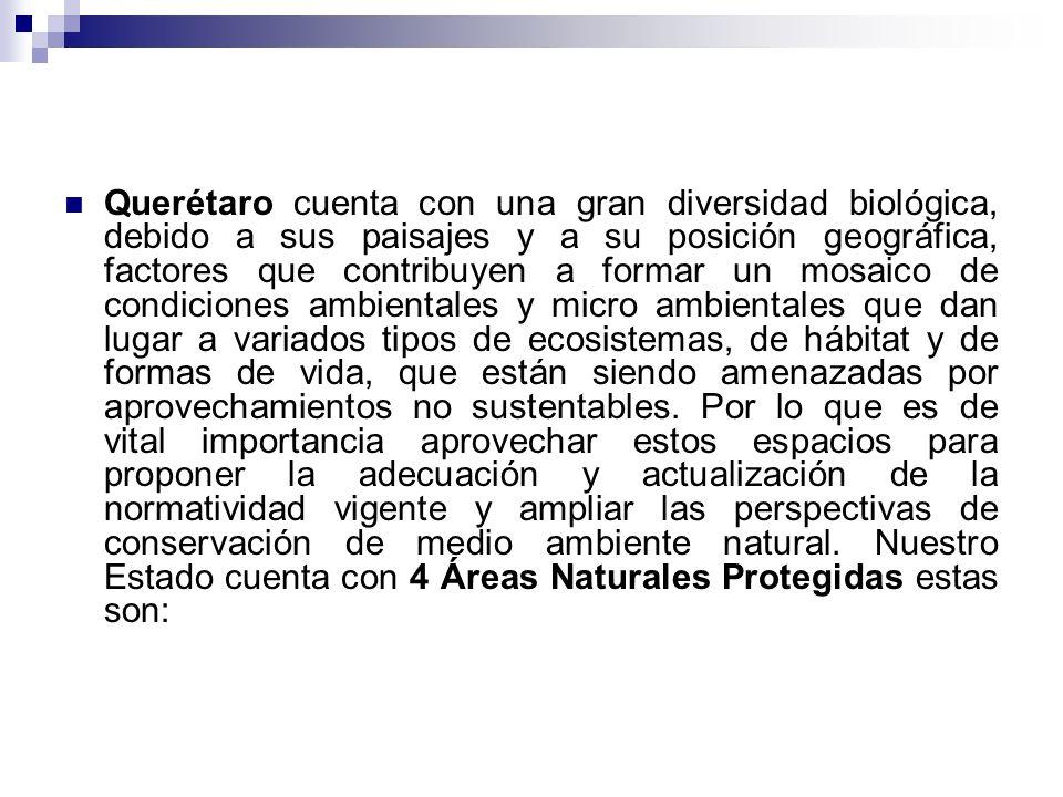 Querétaro cuenta con una gran diversidad biológica, debido a sus paisajes y a su posición geográfica, factores que contribuyen a formar un mosaico de